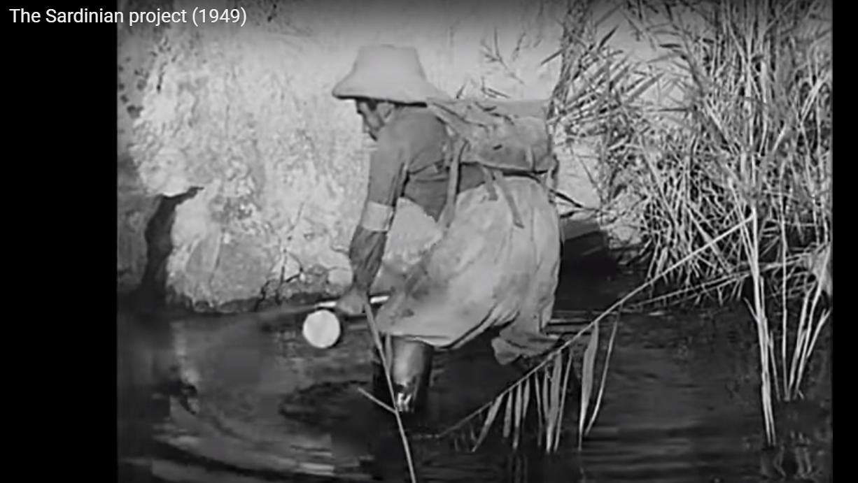 Malaria - The Sardinian Project (005) - DDT contro le larve primavera 1948
